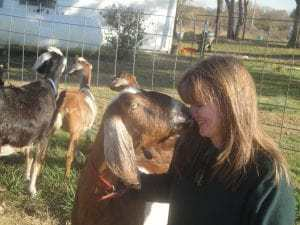 therapy of farming with goats